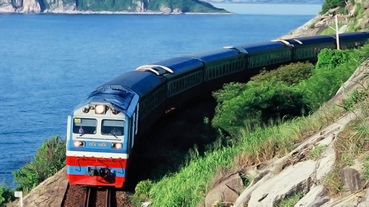 Dịch vụ vận chuyển thú cưng Hồ Chí Minh đi Hà Nội giá rẻ